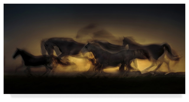 Milan Malovrh Out Of Hell Canvas Art Contemporary Prints And Posters By Trademark Global