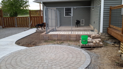 Need dog friendly shrub ideas to disguise dog kennel for Dog friendly flooring ideas