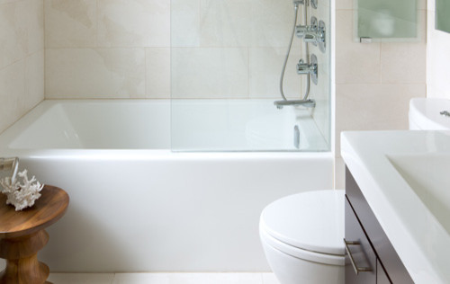Want Frameless Showertub Doors