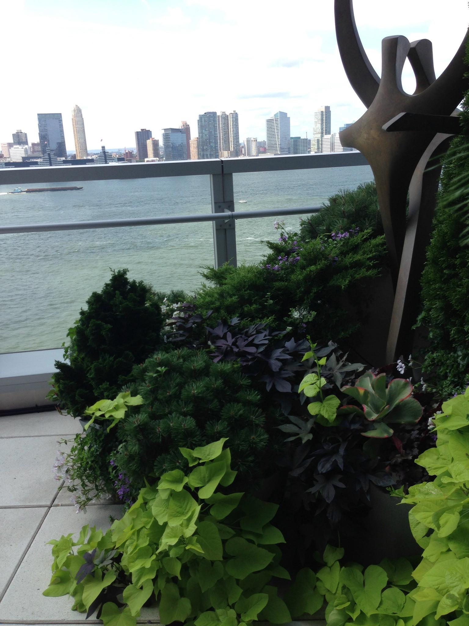 Battery Park City Terrace
