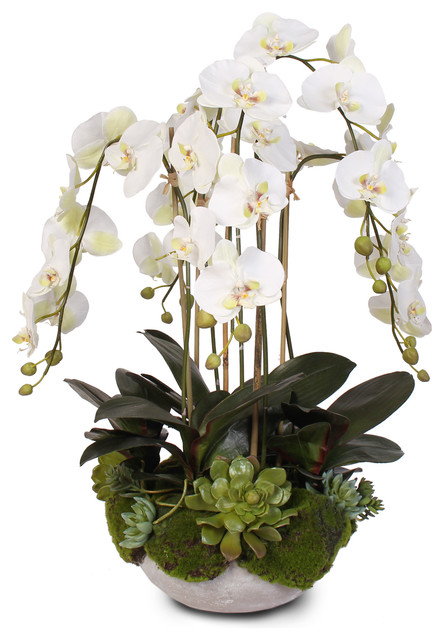 Silk White Orchids With Faux Moss And Succulents With Modern Stone Bowl Transitional Artificial Flower Arrangements By Jenny Silks