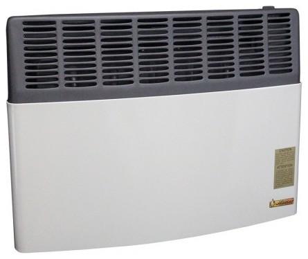 Ashley Direct Vent 17,000 Btu Heater Lp Gas.