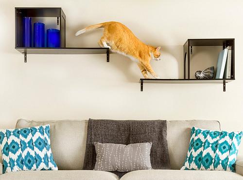 5 Creative Catwalk Shelf Designs The Money Pit