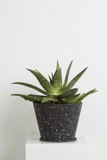 Terrazzo Pots Collection