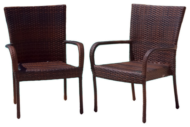 Ferndale Outdoor Brown Wicker Dining Chairs Set Of 2