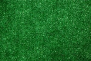 Dean Indoor Outdoor Green Artificial Grass Turf Area Rug 9