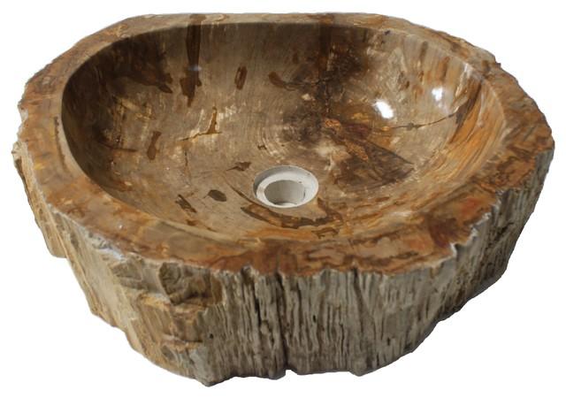 Petrified Wood Stone Unique Bathroom