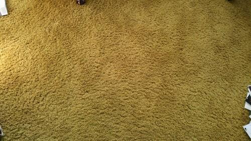 Grandma\'s Old Fashioned Carpet