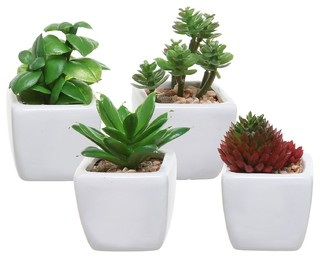 small artificial succulent plants in white ceramic cube planter pots set of 4 artificial. Black Bedroom Furniture Sets. Home Design Ideas
