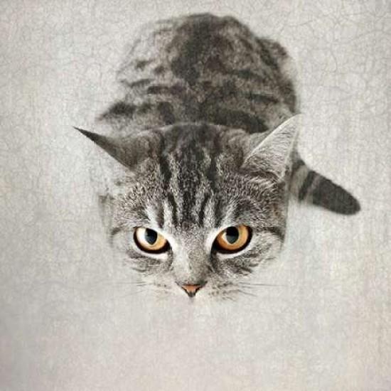 "Hello Kitty poster wall art home decor photo print 24x24/"" inches"