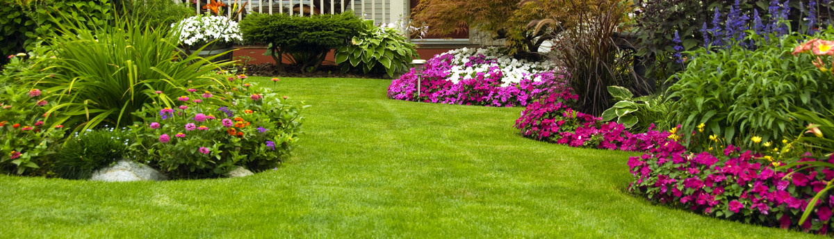 - Green Side Up Landscaping - Franklin, TN, US