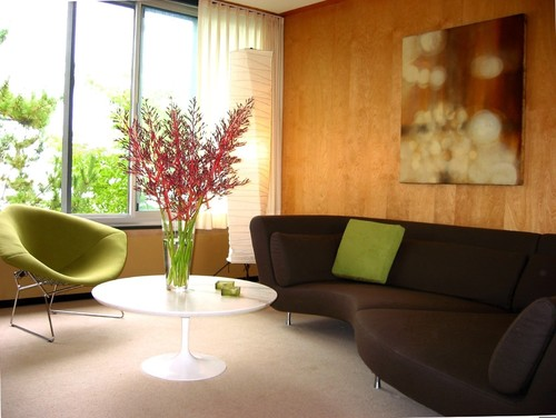 Chocolate Brown Couch Design Ideas
