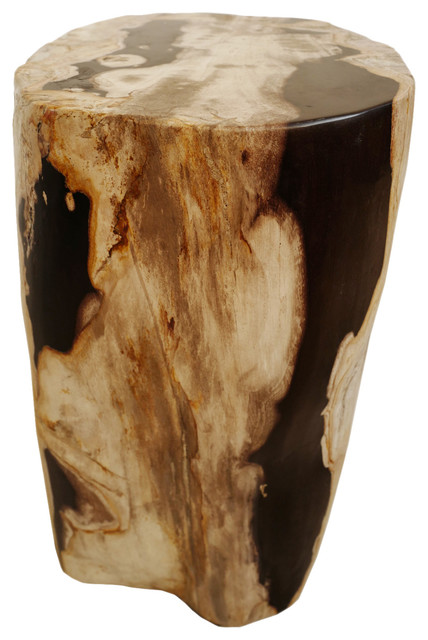 Sensational Petrified Wood Stool Gmtry Best Dining Table And Chair Ideas Images Gmtryco