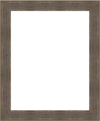 Rustic Barnwood Picture Frames - Rustic - Picture Frames - by Gemline