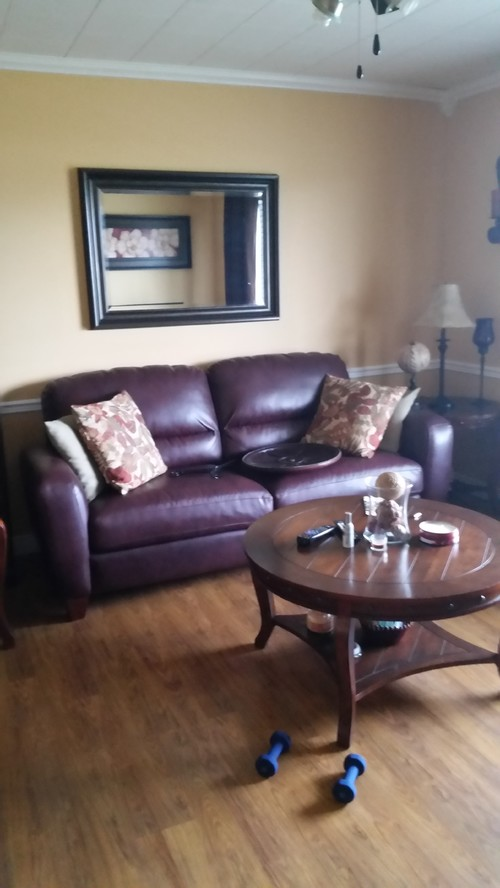 help trying to decorate around a burgundy leather couch