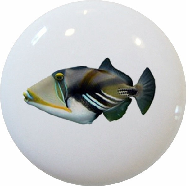 Picasso Triggerfish Ceramic Cabinet Drawer Knob - Beach Style - Cabinet And Drawer Knobs - by ...