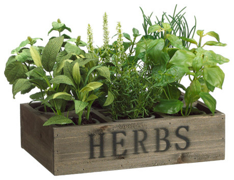 silk plants direct herb gardens, set of 2 - traditional - artificial