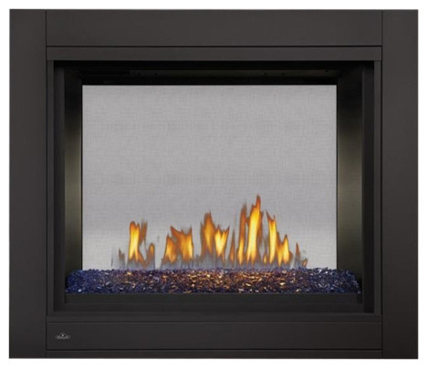 Napoleon Multi-View Vent Gas Fireplace Up To 30000 Btus Safety Screen.