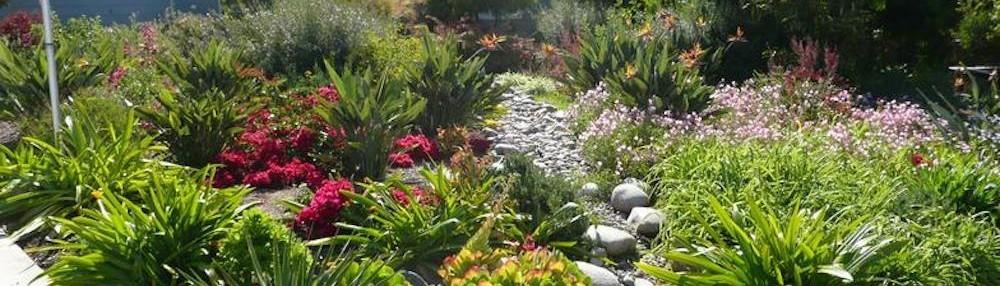 Natural Aspect Gardenscape   La Mesa, CA, US 91943