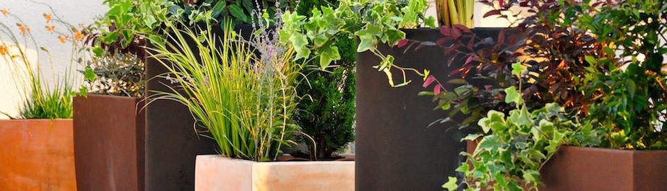sverd jardineria paisatgisme barcelona es 08006