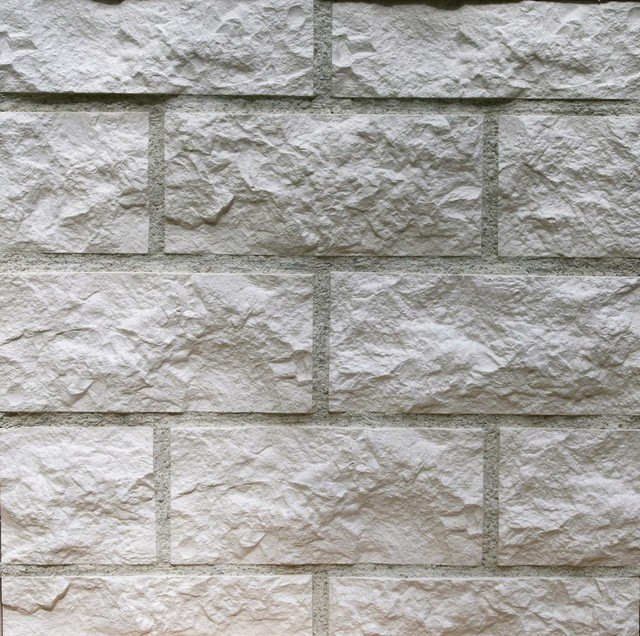 Thin Gypsum Stone-Look Wall Decor Euroc White - Traditional - Siding ...