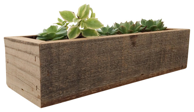 Mia Succulent Box - Farmhouse - Indoor Pots And Planters - by ...