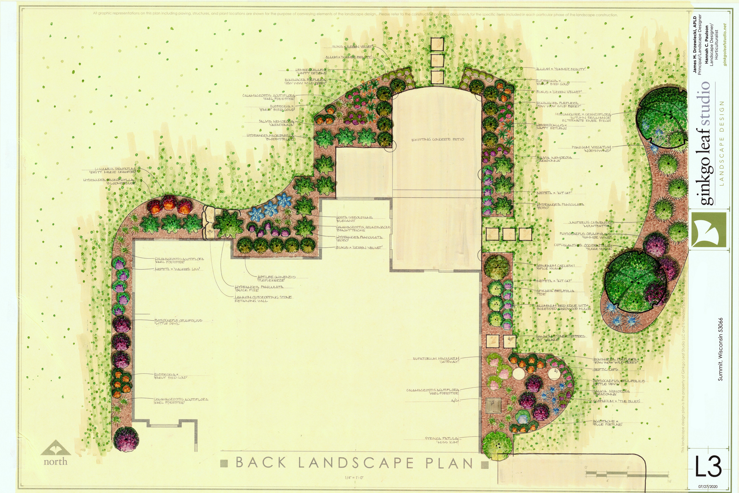 Transitional New Home Landscape - Summit