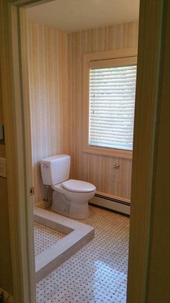 Guest Bath Renovation - Nisseguogue, NY