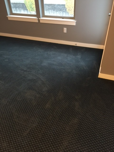 Help my brand new black carpet looks green and blue for Black and white wall to wall carpet