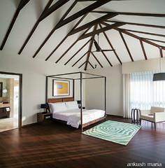 Stunning Bedroom Ceilings That Say Look At Me