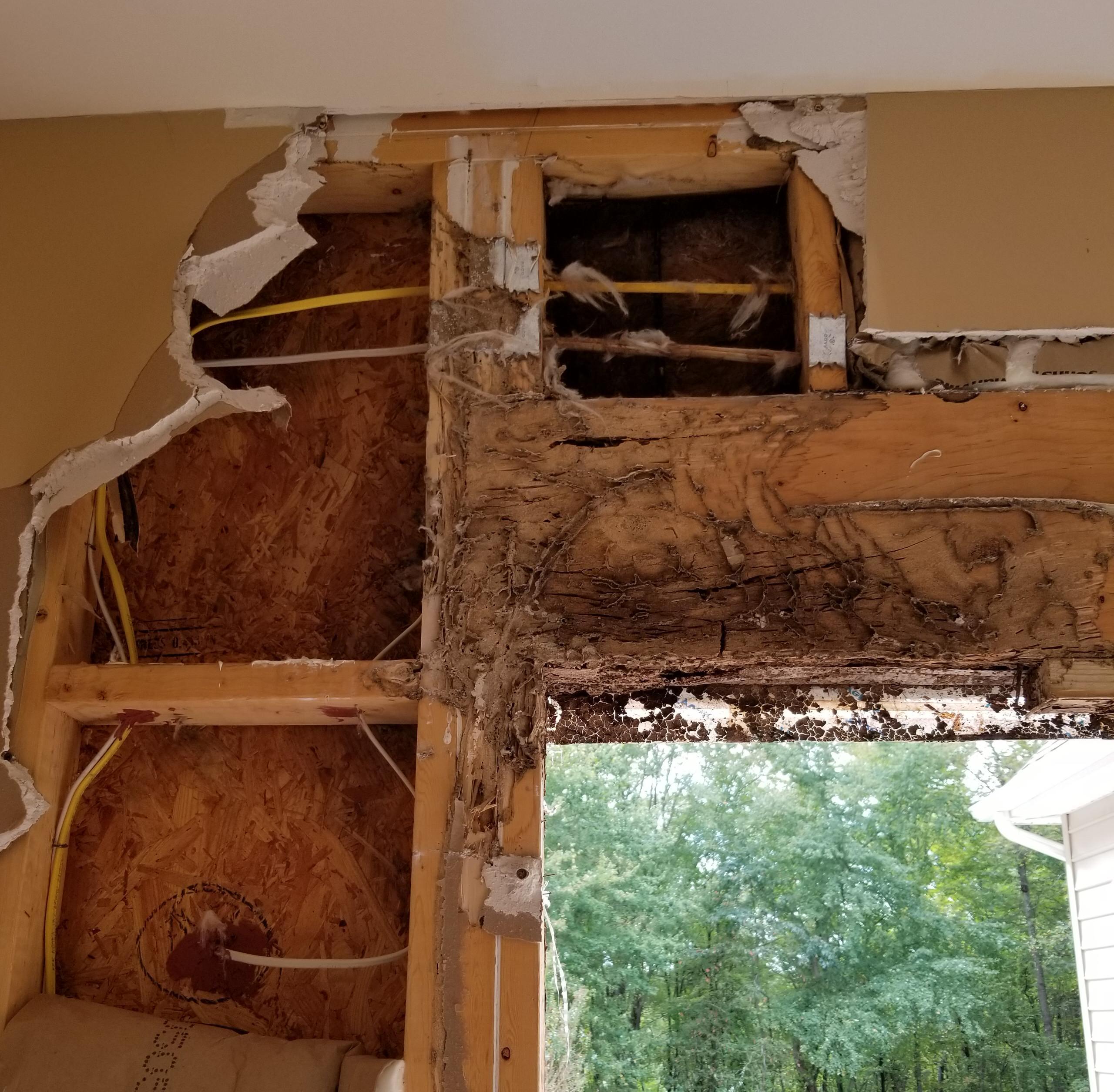 Mey Balcony termite damage