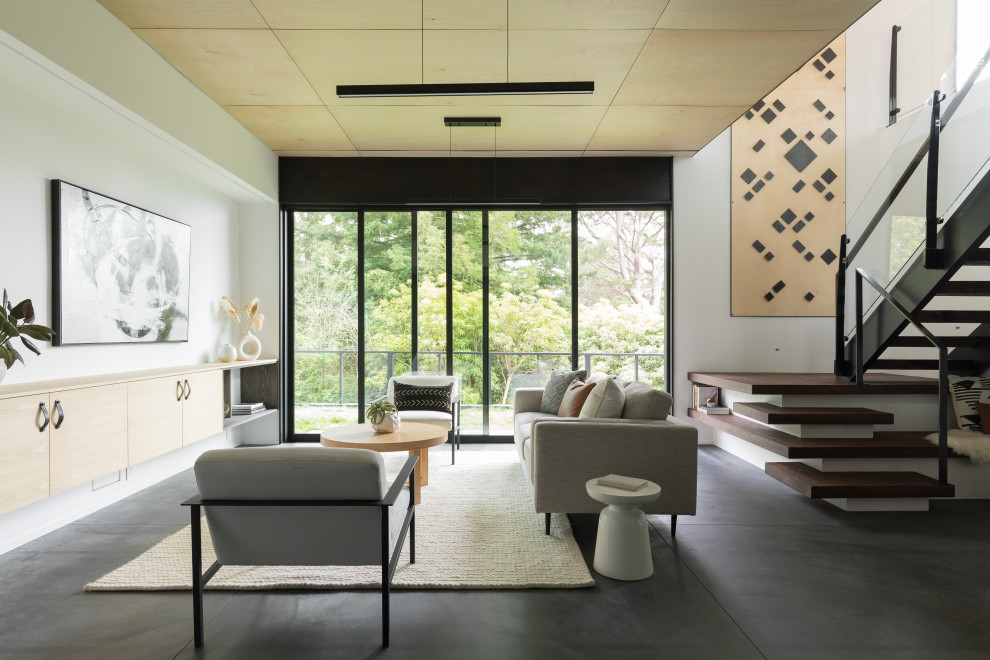 Example of a minimalist living room design in San Francisco
