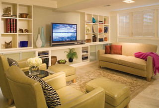 Finished Basement modern family room