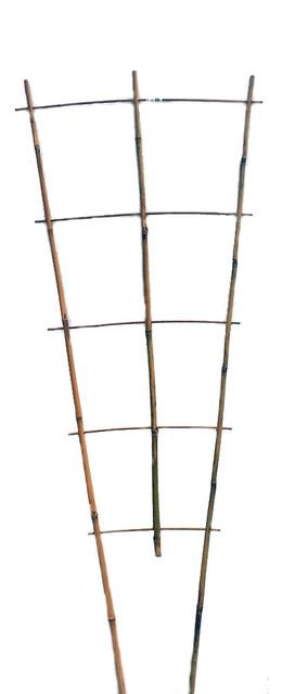 "Set Of 5 Bamboo Ladder Trellis, 48"", 3 Tiers."