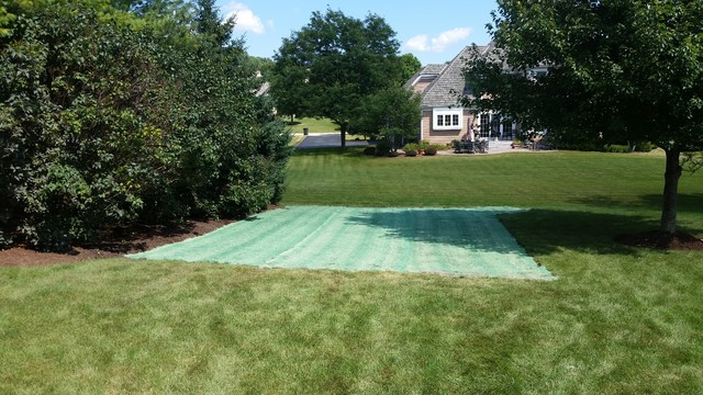 removal of backyard playground grading and lawn restoration after