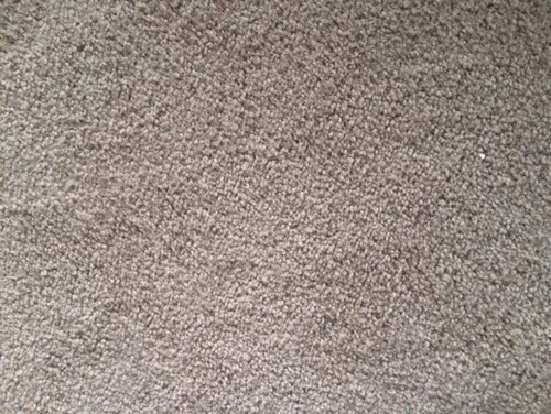 Ugh. Want To Change Living Room Furniture, But Carpet Color Not Great.