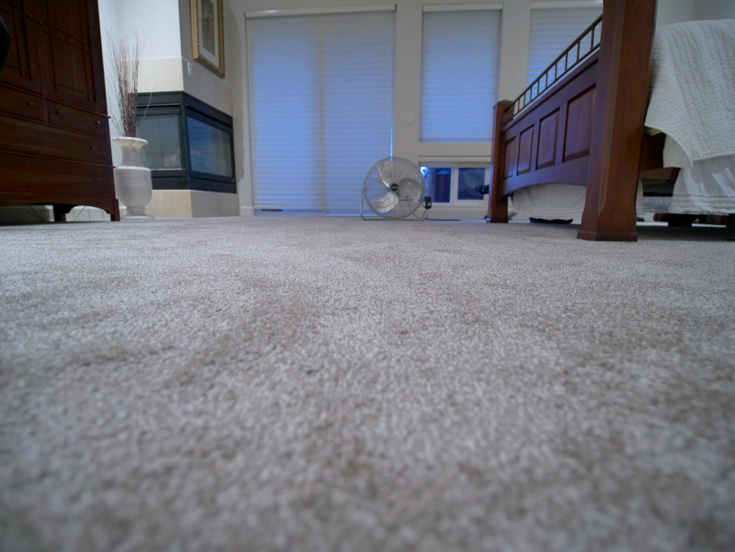 Modern Master Bedroom with Gray Carpet