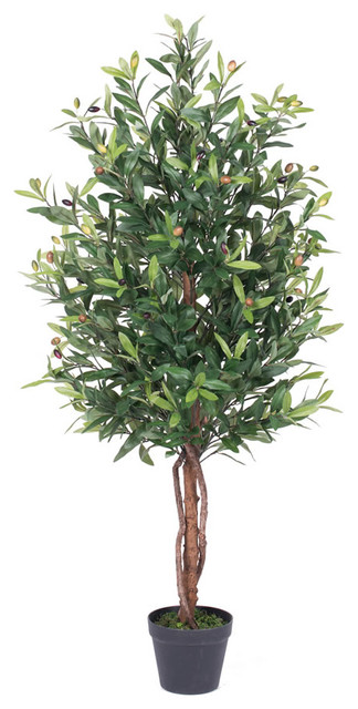 """50"""" Olive Tree With Pot, Green"""