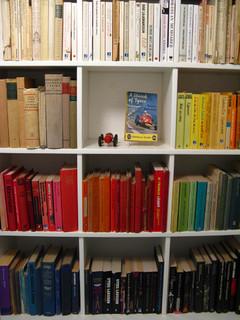 Chez Larsson: Organizing books