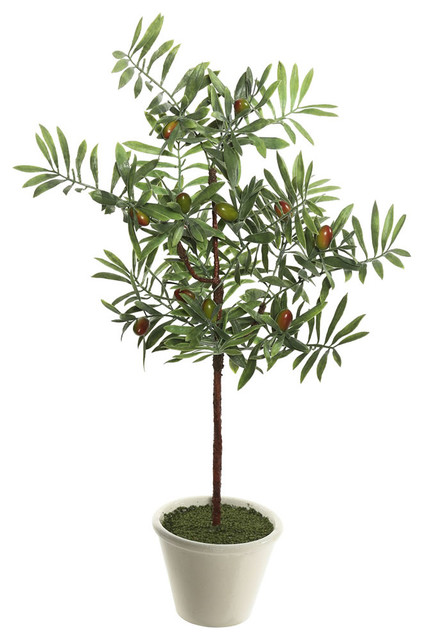 "27"" Olive Hill Tree, White/ Container"