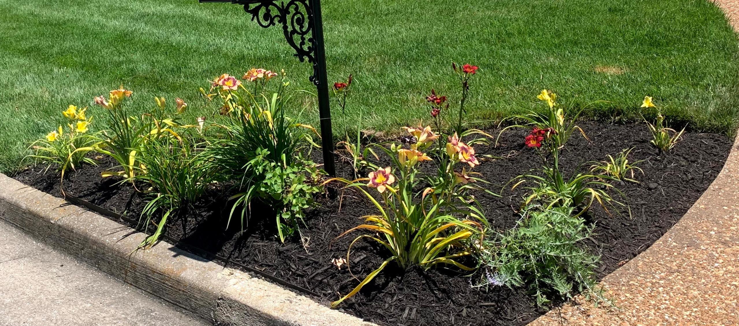 Seasonal Flower beds