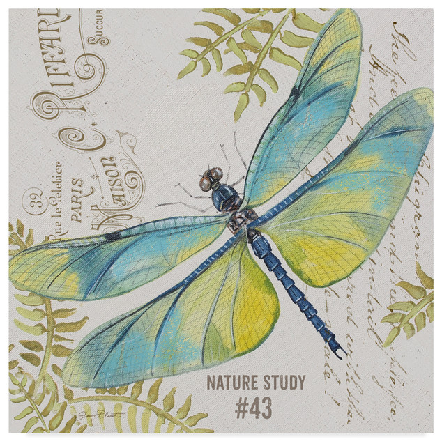 Jean Plout Botanical Dragonfly 3 Canvas Art