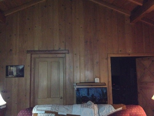 Wood Paneled Walls...help!