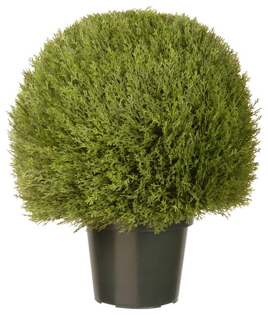 "24"" Cedar Pine Topiary In Green Pot"