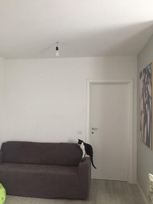 Illuminazione sala