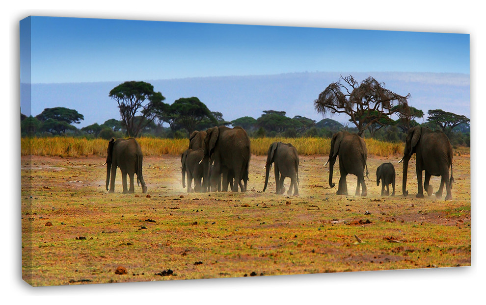 herd of elephants in african landscape canvas picture print