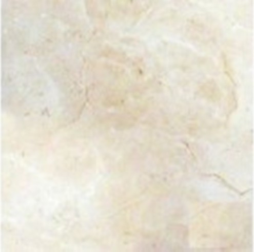 Polished Pietra Marfil Porcelain Tile - Traditional - Wall And Floor ...