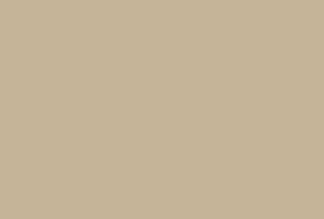 SW6107 Nomadic Desert by Sherwin-Williams paint
