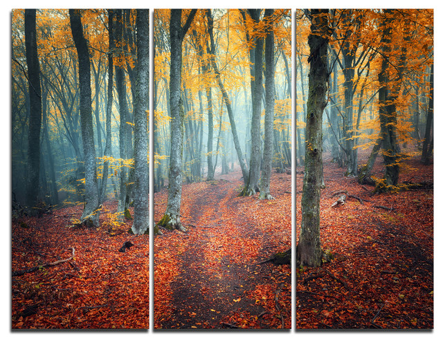 """""""red And Yellow Autumn Forest"""" Photo Canvas Print, 3 Panels, 36""""x28""""."""