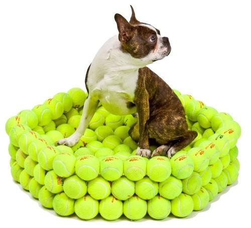 Tennis Bed eclectic pet accessories